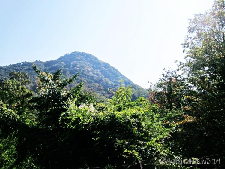 Hello Inwang or Bugak Mountains One Afternoon At Buamdong, Seoul South Korea