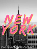 NEW YORK DRY BRUSH-BLOG