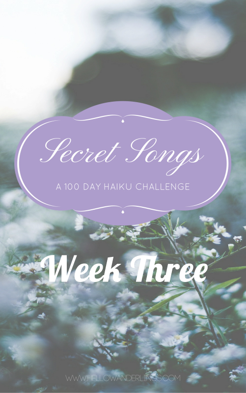 Secret Songs, 100 Days of Haiku. The 100 Day Project