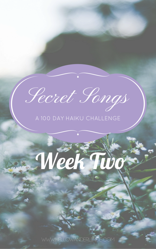 The 100 Day Project: Secret Songs 100 Day Haiku Week Two